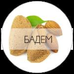 БАДЕМ-01