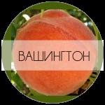 ВАШИНГТОН-01