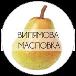 ВИЛМА-01