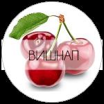 ВИШНАП-01