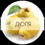 ДЮЛЯ-01