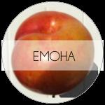 ЕМОНА-01