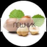 ЛЕШНИК-01