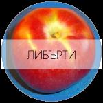 ЛИБЪРТИ-01