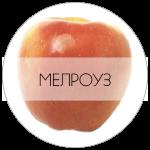 МРЗ-01