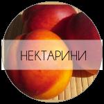 НЕКТАРИНИ-01