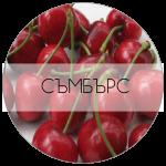 СЪМБЪРС-01