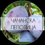 ЧАЧЛЕП-01